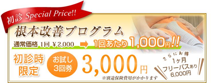 根本改善プログラム キャンペーン 初診時限定 お試し3回券 3,000円